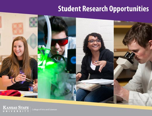 Undergraduate Research Opportunities in the College of Arts and Sciences